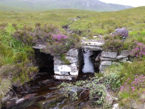 One of the beautifully built bridges that keeps the ancient path drier than the surrounding bog